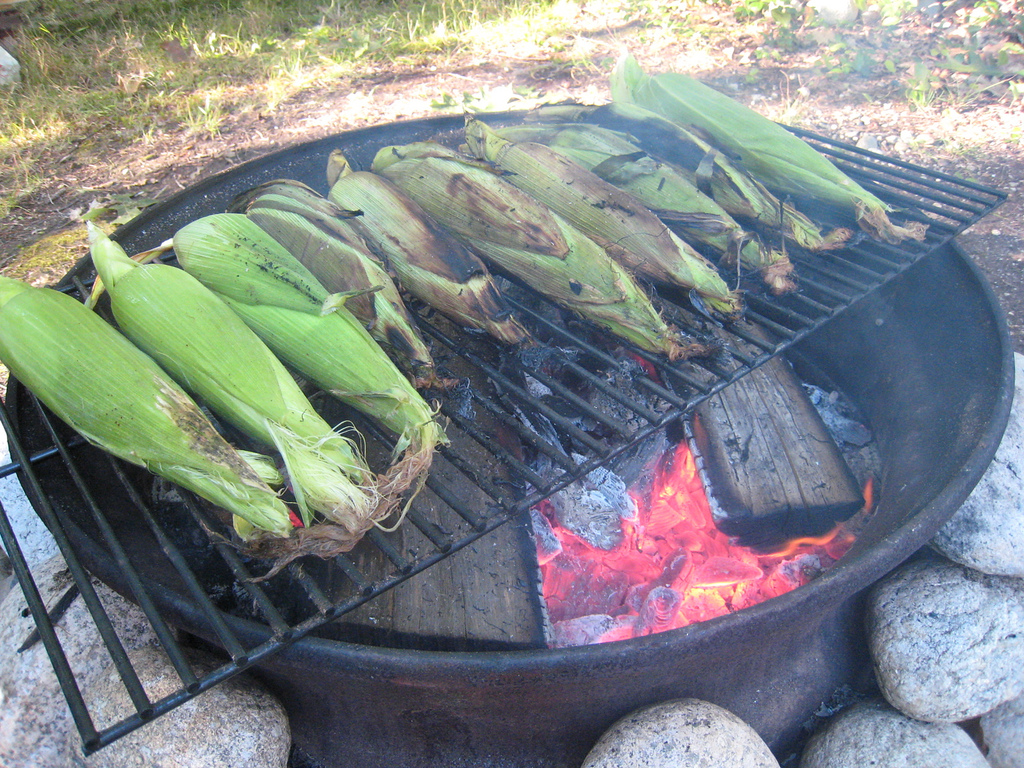 Grilling ideas - meat veggies and fruits