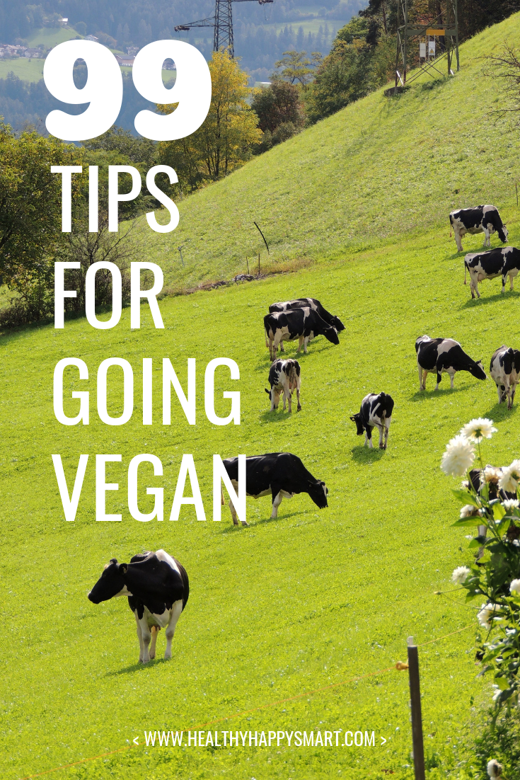 Why go vegan? Why not? Learn how to go vegan with these 99 tips. Do it for your health, do it for the animals and do it for the planet.